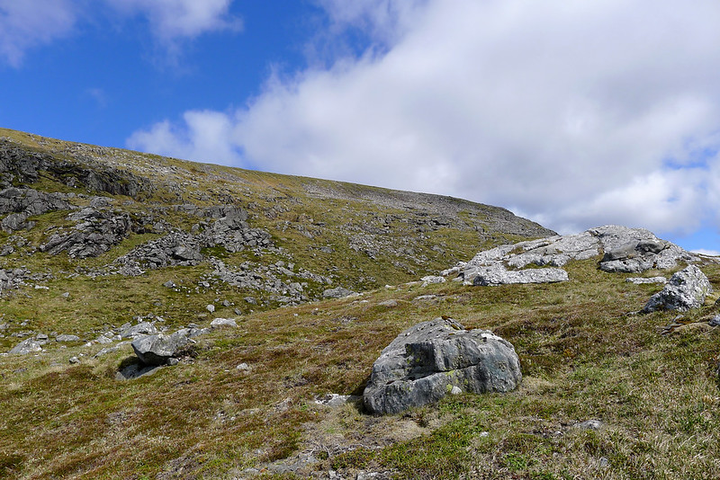 Eastern slopes of Ben Alder