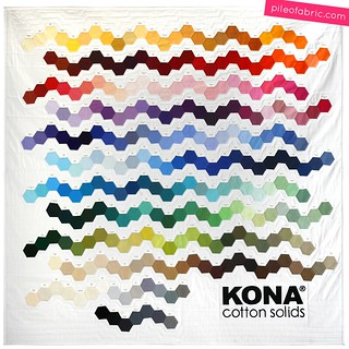 Kona® Cotton Genetics Quilt