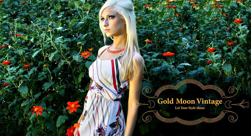 Gold Moon Vintage Banner