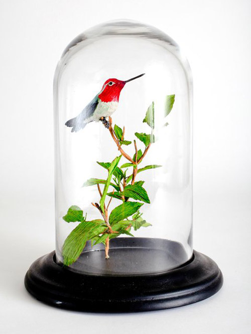 vegan-taxidermy5