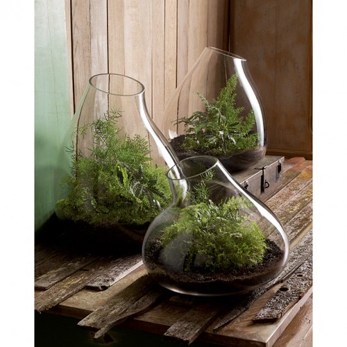 sq-mL-xl-Recycled-Glass-Bubble-Terrariums-by-roost-GL154-GL156-542x542