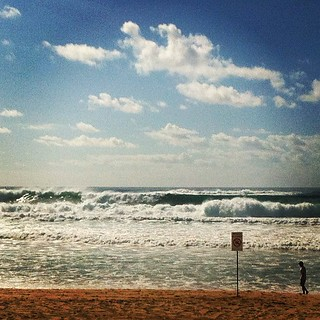 Imagem de  North Steyne Beach perto de  Northern Beaches. square lofi squareformat iphoneography instagramapp uploaded:by=instagram foursquare:venue=4b1b0cbcf964a52027f723e3