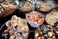 JPJ Boerenmarkt3.jpg