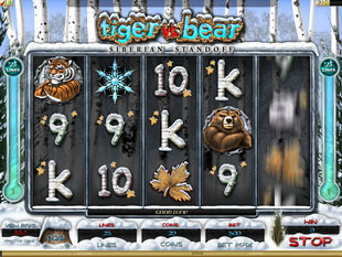 Tiger vs. Bear slot game online review