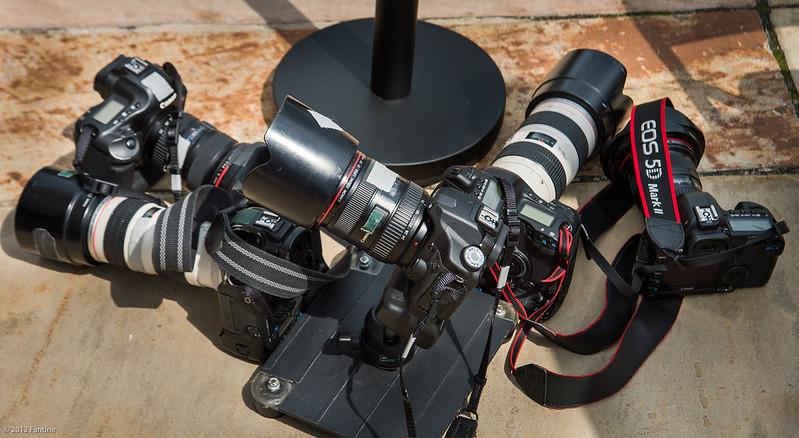 Canon Cameras-100