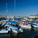 Cabo San Lucas Harbor | Cabo San Lucas | The Design Foundry