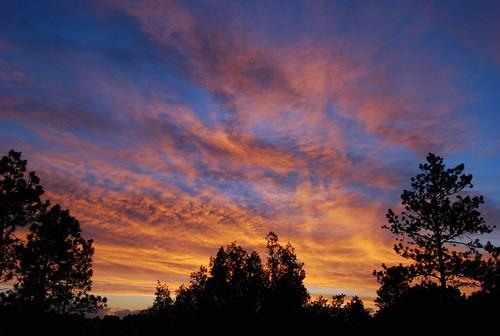 Ignite The Light   Raising Colorado