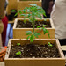 Container Gardening Workshop with Victory Gardens At Old Faithful | photos: Rommy Ghaly