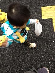 コンビニで買ったパンを運んでくれるお手伝いとらちゃん (2012/6 /13)