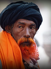 Ajmer - Red-bearded Man