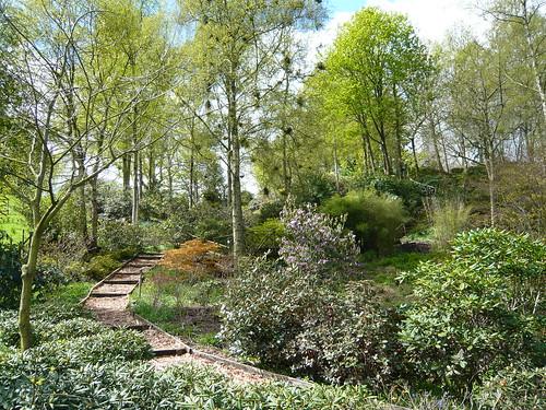 Himalayan garden Grewelthorpe 180