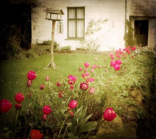 Spring Cottage Garden