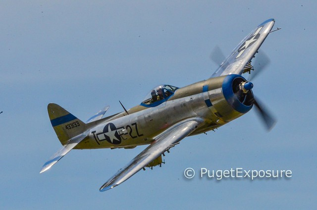 "Down the Centerline Series:  Republic P-47D Thunderbolt ""Tallahassee Lassie"""