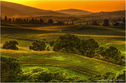 california sunset nature grass landscape hdr rollinghills windingroads arastraderopreserve d7000 californiaoaktrees magicunicornverybest topazdetail galleryoffantasticshots