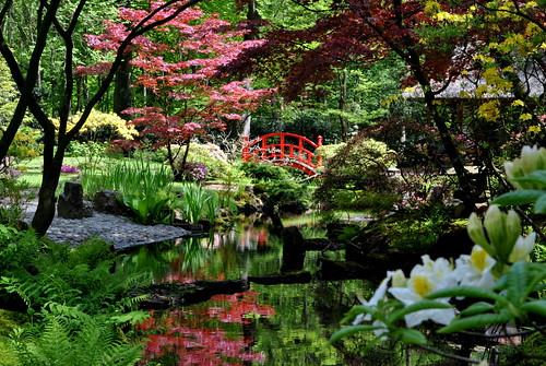 Clingendael Park - Japanese Garden, Den Haag, Holland