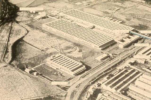 The Farm Factory - The Gangland Pig
