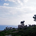 Small photo of Goats, Mt Srd, Dubrovnik
