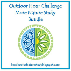 More Nature Study Bundle Button - Square