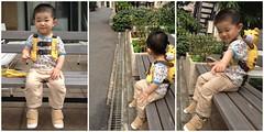 ベンチ腰掛けとらちゃん(2012/5/31)