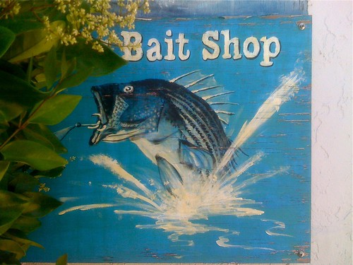 california street wood blue fish signs building sign shop fishing hand view bass painted main letters scenic delta type weathered lettering trout hook splash bait patina haps hooked riovista caughtmyeye