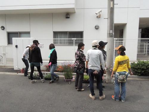 2012-6-2ビオトープガーデン実習-7