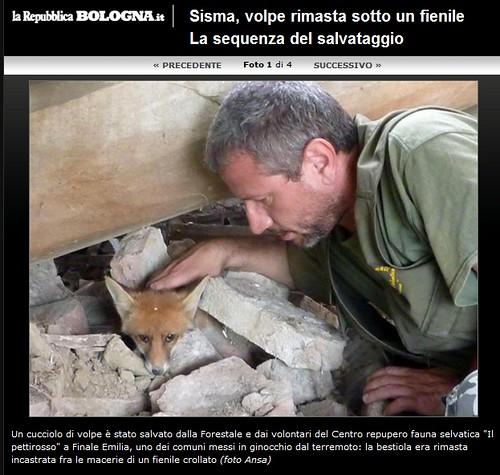 Italia emergenza terremoto sisma emilia volpe rimasta for Planimetrie della cabina del fienile