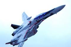 1/100 VF-25F MESSIAH
