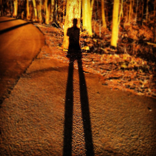trees shadows dusk selfportraits sunsets paths roads instagram