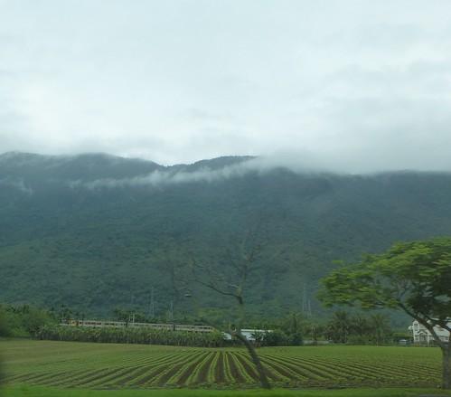 Taiwan-Taroko-Falaise -Cingshuei (12)