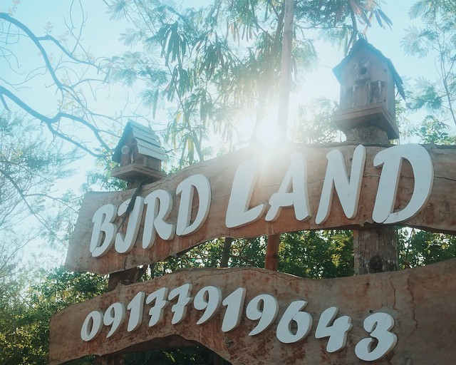 Birdland Beach Resort