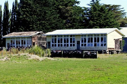 old school newzealand building abandoned rural decay otago derelict dilapidated kelso vandals deterioration heriot oldandbeautiful