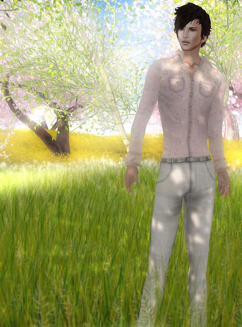 SHIKI - Sakura Shirt for Men