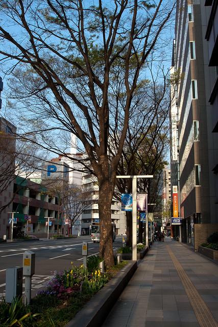 2012-kyushu-70