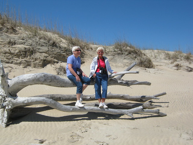 False Cape State Park features 7 miles of undeveloped Atlantic Ocean shoreline.