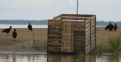 部分漁夫將捕撈的河豚肢解後放入此木箱中浸至河裡,便可輕鬆吸引大批Piracatinga魚群前來覓食。(「Projeto Boto」攝)