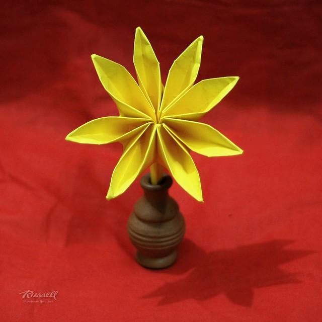 Origami 8 Petal Flower