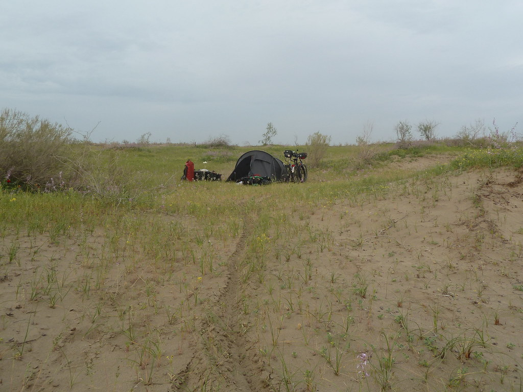 Campament prop d'Uchaji, Karakum (Turkmenistan)