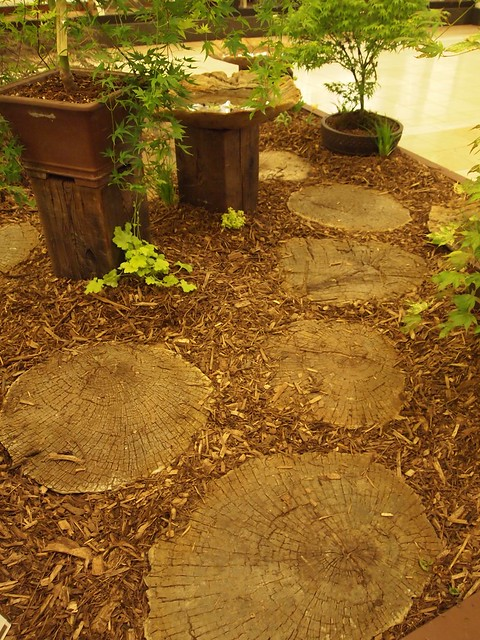 Nice paving using tree trunk lices
