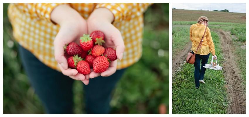 strawberries_014