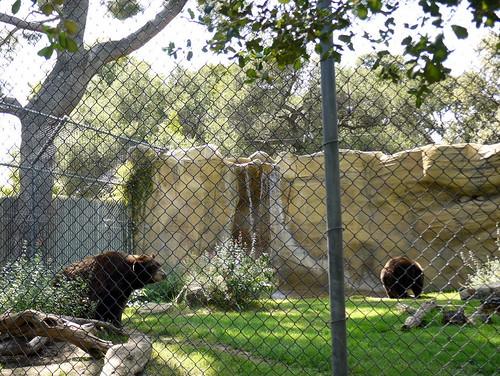120506 OC Zoo