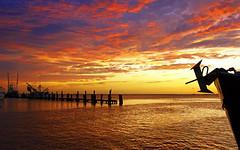 Sunset Grand Isle LA