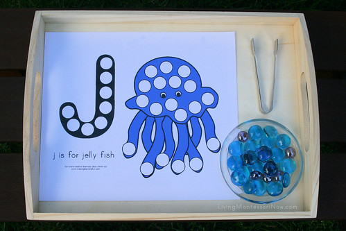J is for Jellyfish Activity
