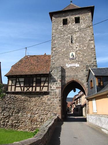 dambach la ville- chateaux- bernstein- ortenbourg 335