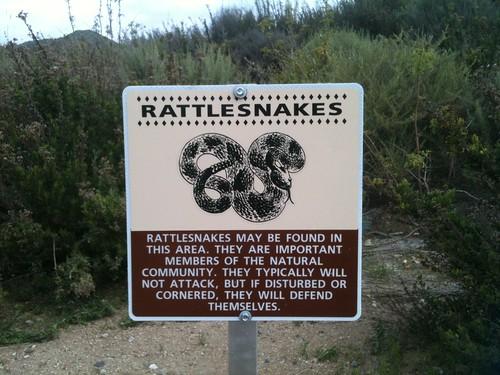 rattlesnake warning