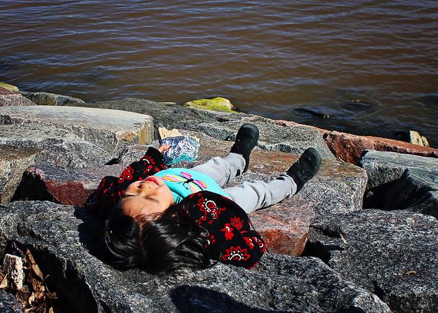 lily on rocks