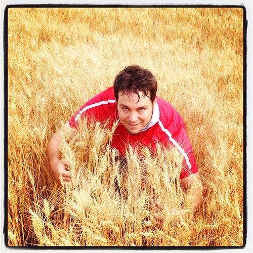 My creeping through the wheat shot