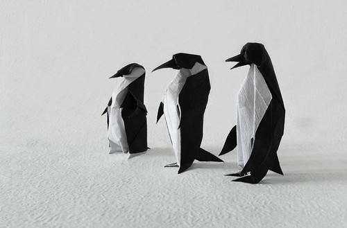 Migratory penguins