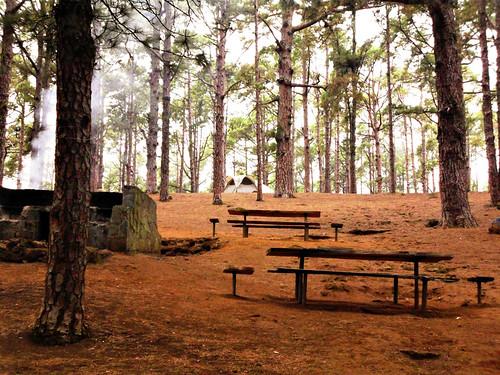 camping-in-tenerife
