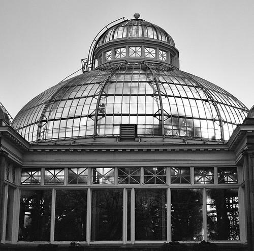 the Conservatory at Allan Gardens, Toronto