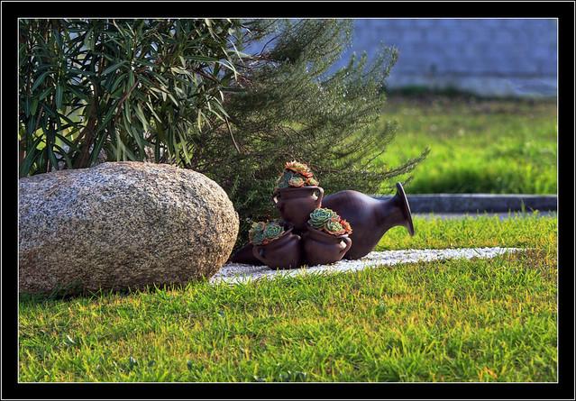 El jardin de la vecina flickr photo sharing for El jardin de vikera